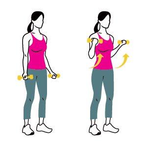 arm strengthening-biceps-curl